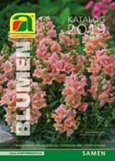 Blumensamen 2019 Blätterkatalog Austrosaat