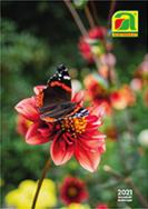 Blumenzwiebel 2021 für Frühjahrspflanzung
