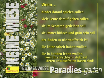 Austrosaat - Neuanlage Einer Blumenwiese Blumenwiese Anlegen Garten