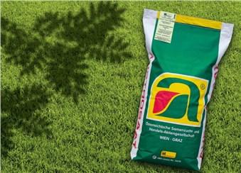 WeekendGreen XL: Schattenrasen Weekend XL   Bestehend aus Zuchtsorten von Rasengräsern mit über